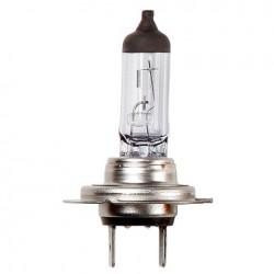 Lampadina H5 12v 55/60w - RIN-R012